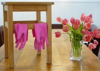 Krise 4 – Angemerkt: Frühling im Zuhause